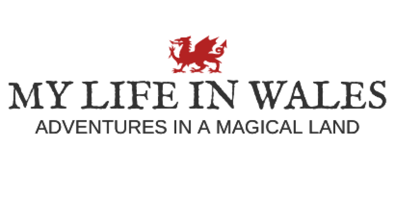my life in wales logo
